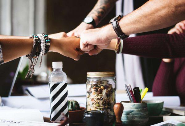 startup collaboration