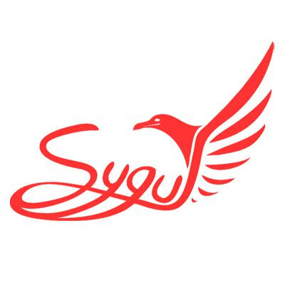 Sygul Technologies Private Limited