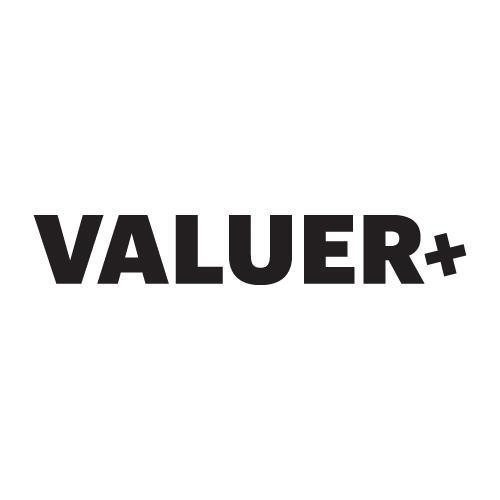 Valuer.ai