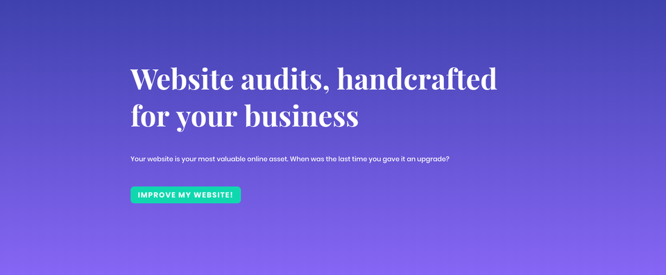 The Website Audit