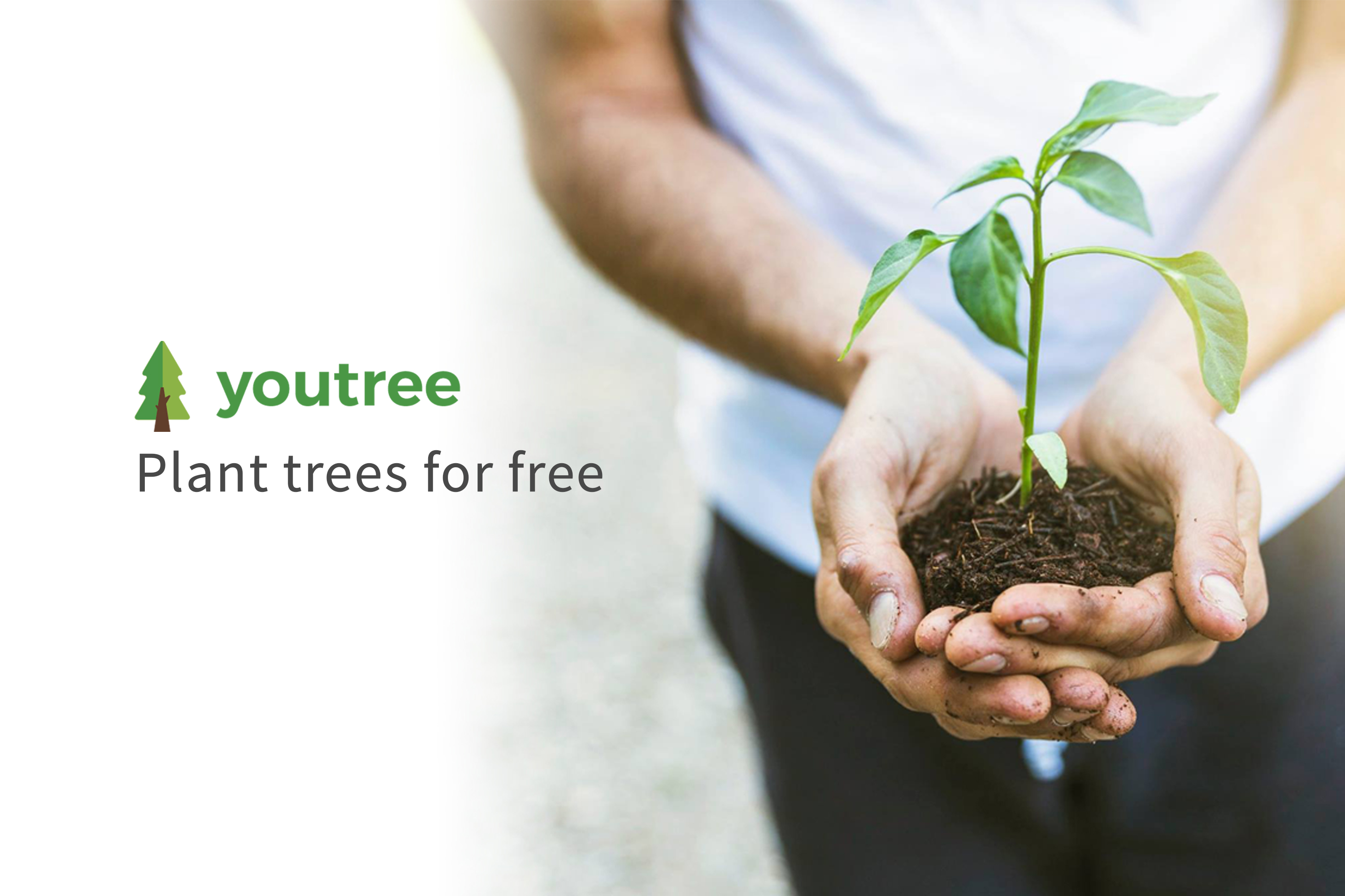 Youtree