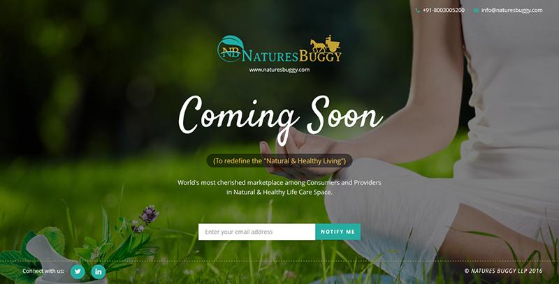 NaturesBuggy