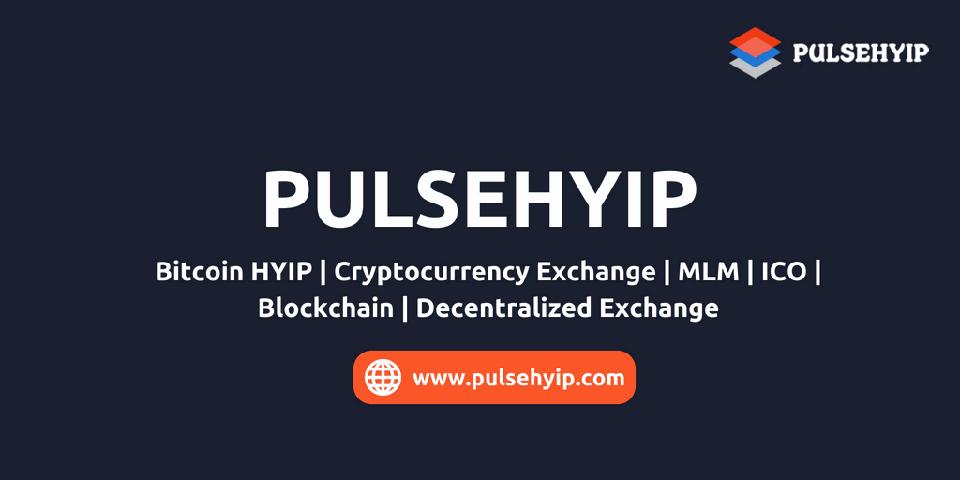 Pulsehyip Team
